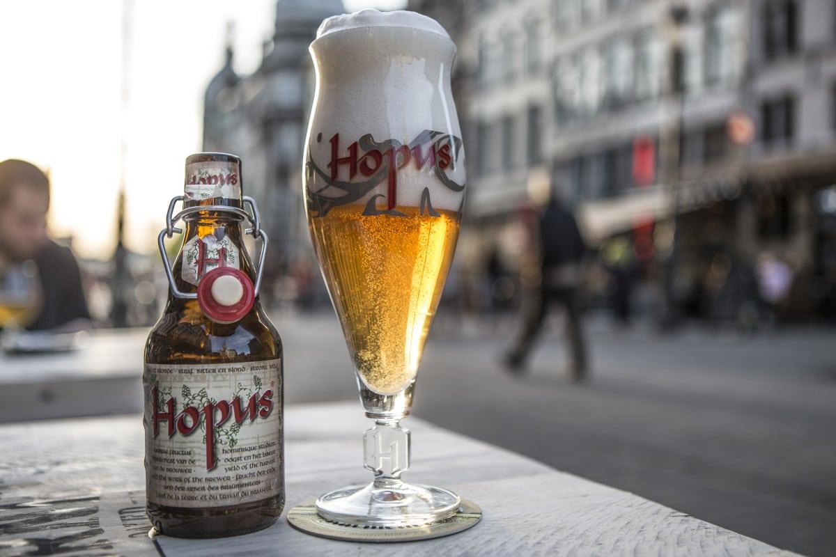 Hopus © Bart Van der Perre (2 of 3)