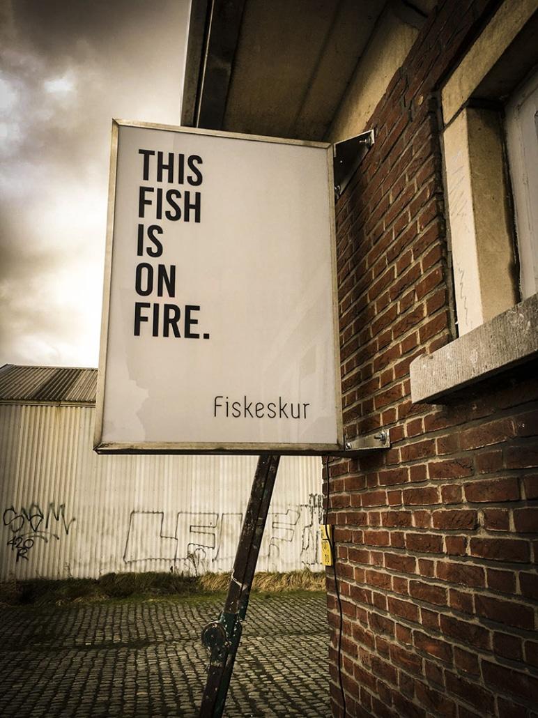 Fiskskur231-772x1030