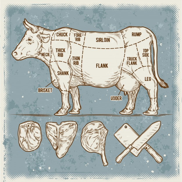 vector-illustration-set-cuttings-beef_1441-103
