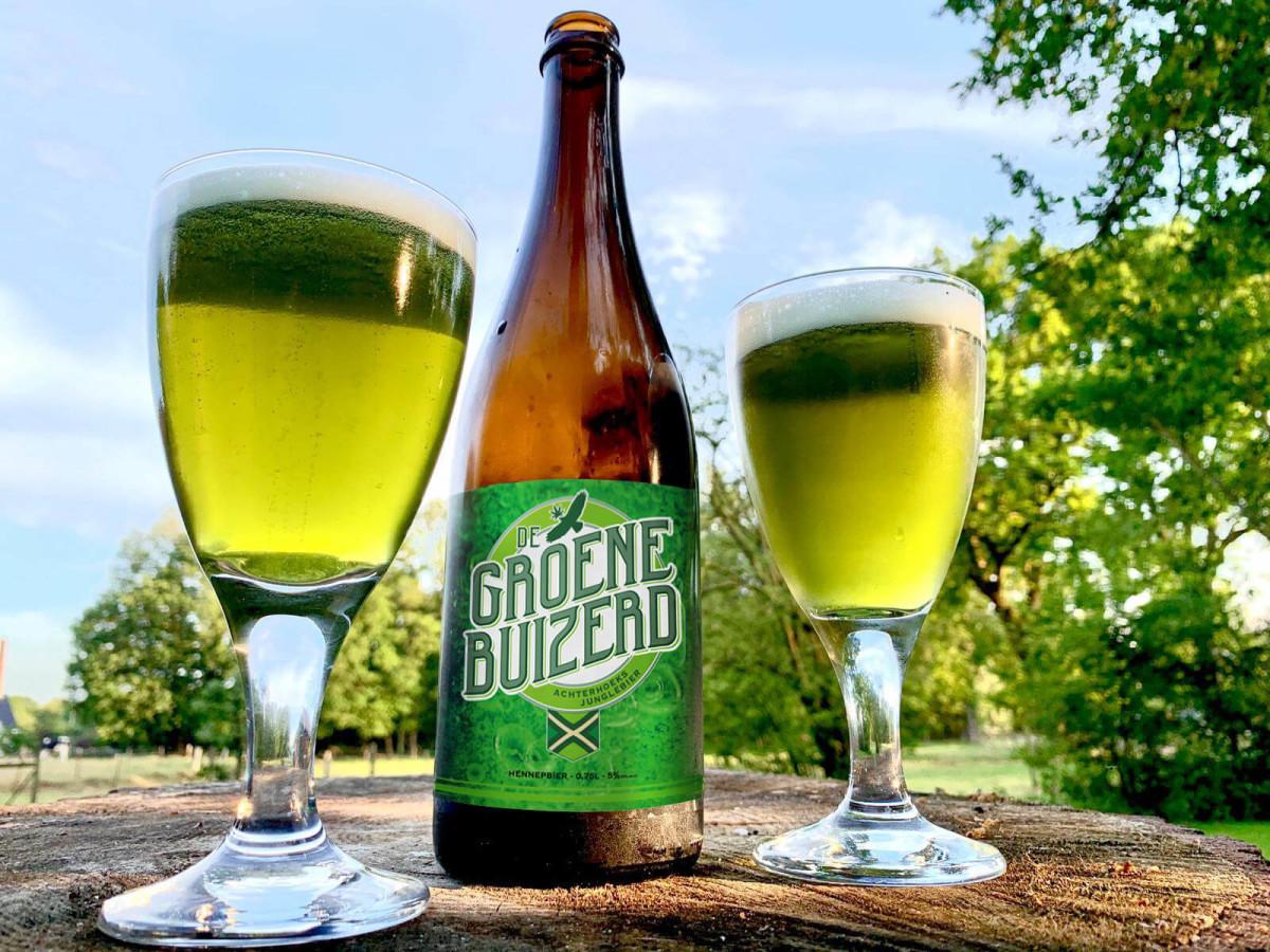 De-groene-buizerd-back