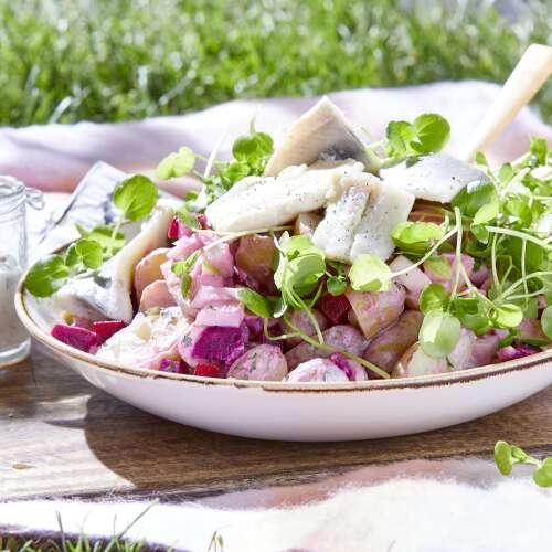 Salade met haring